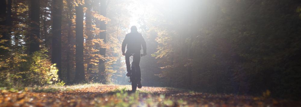 Junger Mann fährt mit Fahrrrad durch einen Wald