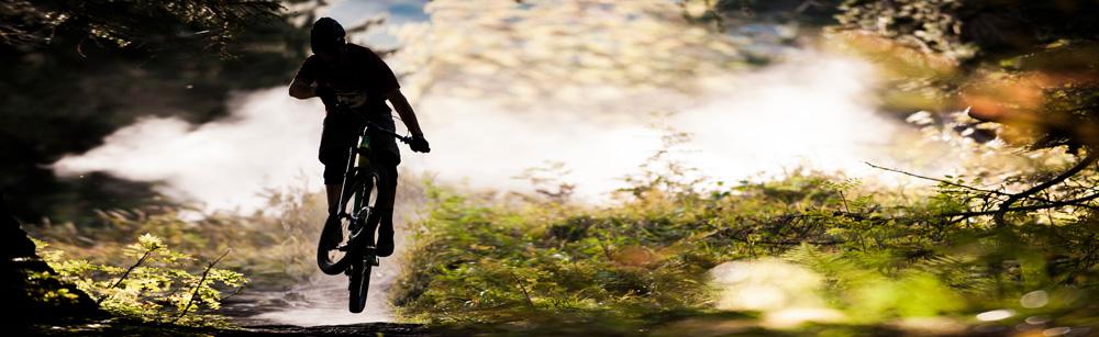 Junger Radfahrer im Wald
