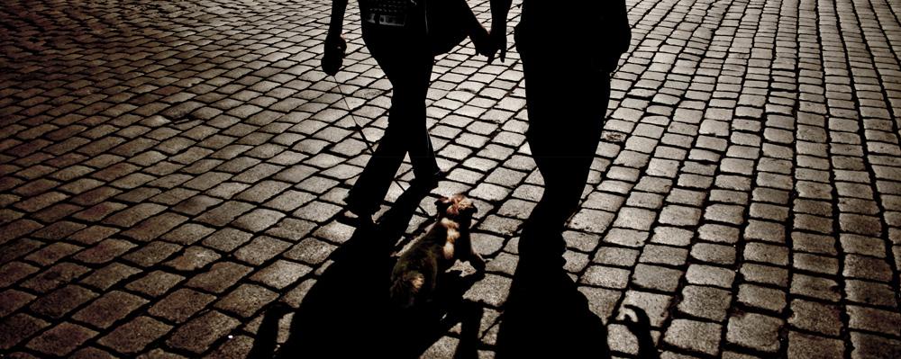 zwei Menschen mit Hund auf Kopfsteinpflaster im Gegenlicht