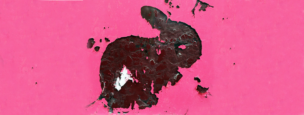 Kaninchen als kaputte Folie auf rosa Hintergrund