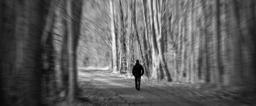 ein Mann geht durch einen Wald